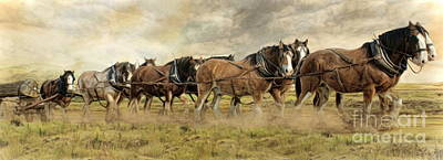 Australia Digital Art -  In For The Long Haul by Trudi Simmonds