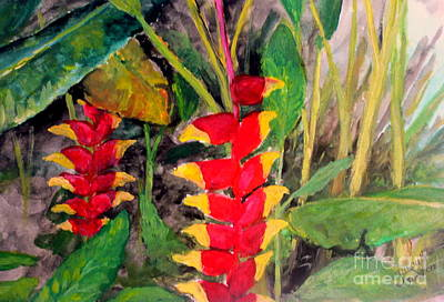 Heliconia Painting -   In The Middle Of The Brushwoods by Jason Sentuf