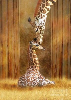 Calf Digital Art -  Love ...... by Trudi Simmonds