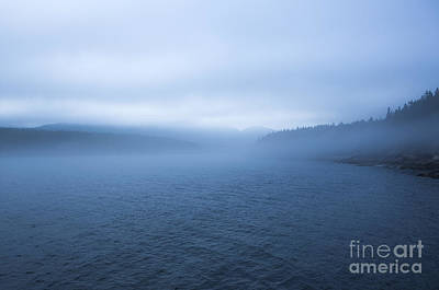 Mist In Otter Cove Print by Diane Diederich