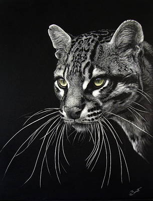 Scratchboard Painting -  Ocelot 2 by Lesley Barrett