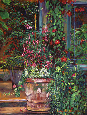 Pot Of Fuschia Flowers Print by David Lloyd Glover
