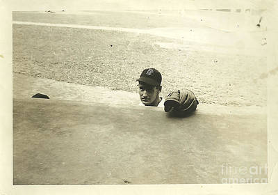 Dugout Photograph -  Ted Williams by Diane Diederich