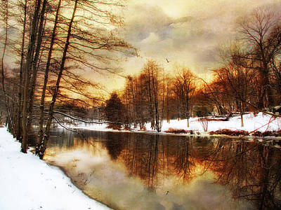 Winter Trees Digital Art -  Winter Sunset by Jessica Jenney