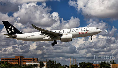 Star Alliance Airlines Photograph - Airbus A-330 Avianca Airlines by Rene Triay Photography