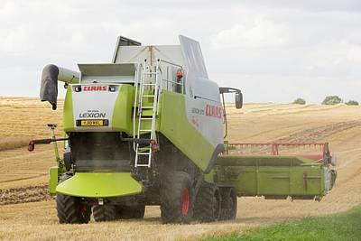 A Farmer Harvesting Wheat Print by Ashley Cooper