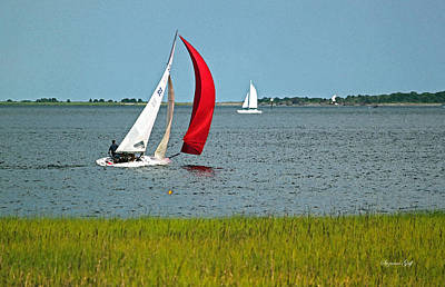 A Perfect Day For Sailing Print by Suzanne Gaff