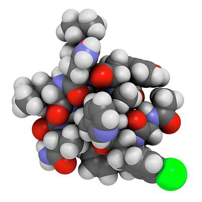 Abarelix Drug Molecule Print by Molekuul