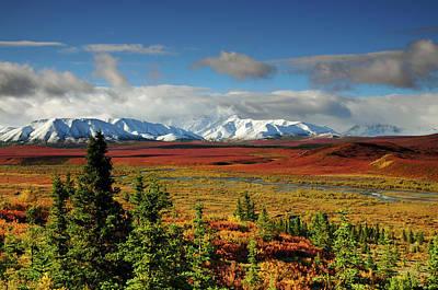 Alaska Range, Autumn, Taiga, Denali Print by Michel Hersen