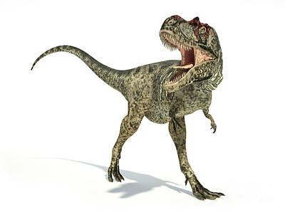 Anger Digital Art - Albertosaurus Dinosaur On White by Leonello Calvetti