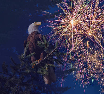 Fir Trees Photograph - American Pride by Angie Vogel