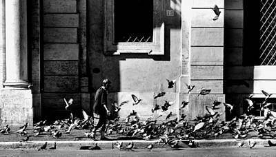 Mess Photograph - Amongst The Pigeons In Rome by Mountain Dreams