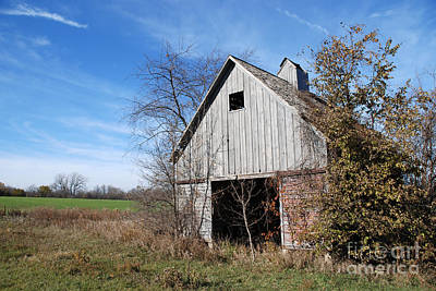 An Old Rundown Abandoned Wooden Barn Under A Blue Sky In Midwestern Illinois Usa Print by Paul Velgos