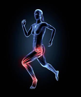Human Joint Photograph - Anatomy Of Runner by Andrzej Wojcicki