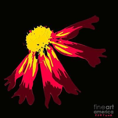Flower Digital Art - Anemone by Dragica  Micki Fortuna