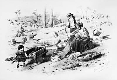 Gold Rush Painting - Australia Gold Rush, 1852 by Granger
