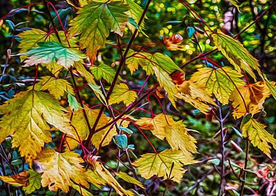 Autumn Leaves Print by Omaste Witkowski