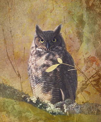 Autumn Owl Print by Angie Vogel