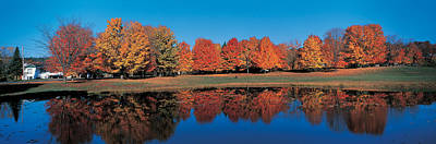 Quebec Houses Photograph - Autumn Trees Laurentide Quebec Canada by Panoramic Images