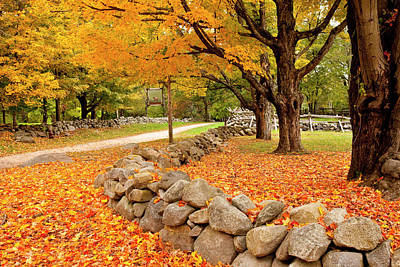 Hartwell Photograph - Autumn View Of The Famous Battle Road by Brian Jannsen