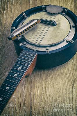 Rhythm And Blues Photograph - Banjo And Harp by Carlos Caetano