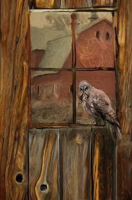 Barn Owl Print by Jack Zulli
