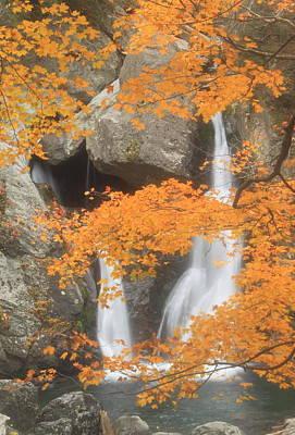 Autumn Foliage Photograph - Bash Bish Falls In Autumn by John Burk