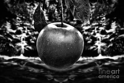 Beautiful Apple Print by Milan Karadzic