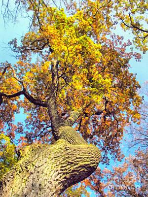 Brunch Painting - Beautiful Autumn Landscape by Odon Czintos