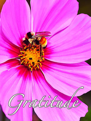 Fuzzy Digital Art - Bee On Pink - Gratitude by Bill Caldwell -        ABeautifulSky Photography