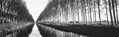Belgium, Tree Lined Waterway Print by Panoramic Images
