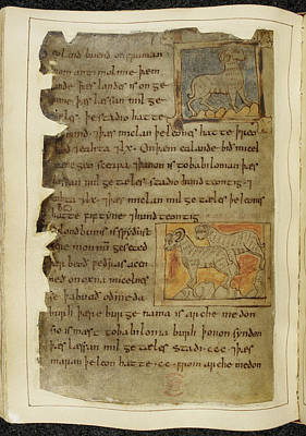 Categories Photograph - Beowulf An Epic Poem by British Library