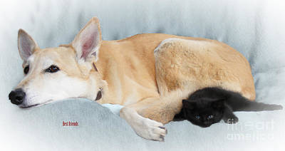 Dogs Photograph - Best Friends by Linsey Williams
