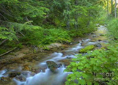 Big Creek Print by Idaho Scenic Images Linda Lantzy