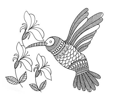 Hummingbird Drawing - Bird Hummingbird by Neeti Goswami