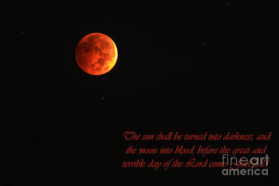 2 Solitudes Photograph - Blood Moon  by Thomas R Fletcher