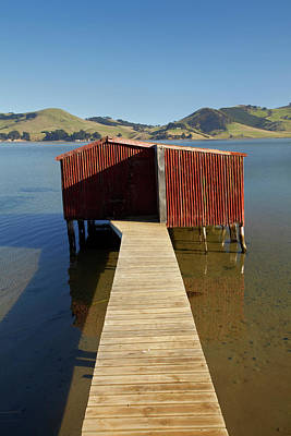 Boat Shed, Hoopers Inlet, Otago Print by David Wall