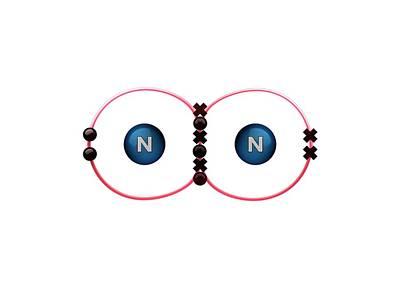 Atom Photograph - Bond Formation In Nitrogen Molecule by Animate4.com/science Photo Libary