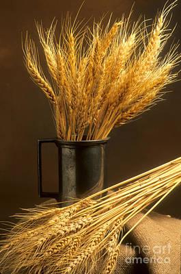 Bouquet Of Wheat Print by Bernard Jaubert