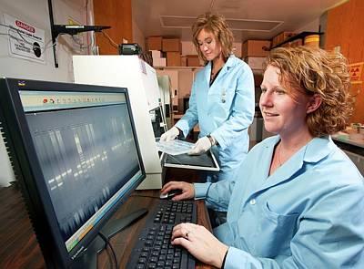 Bovine Disease Genetics Research Print by Stephen Ausmus/us Department Of Agriculture