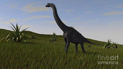 Brachiosaurus Grazing In A Grassy Field Print by Kostyantyn Ivanyshen