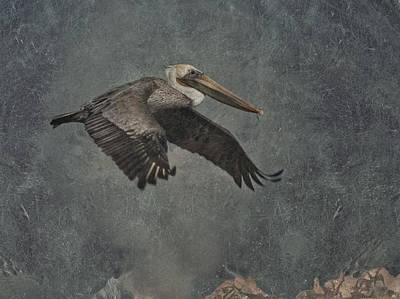 Pelican Digital Art - Brown Pelican 2 by Ernie Echols