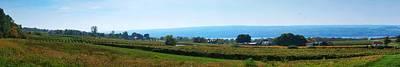 Bull Horn Creek Farm Wineyard New York Panoramic Photography Print by Paul Ge