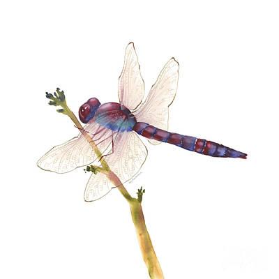 Burgundy Dragonfly  Original by Amy Kirkpatrick