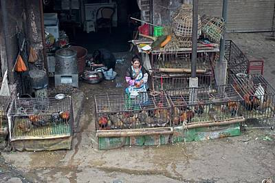 Chicken Photograph - Caged Chickens In A Food Market by Tony Camacho