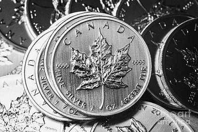 Canadian One Ounce Maple Leaf Silver Coins Print by Joe Fox