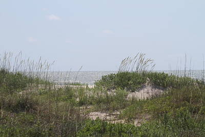 Grass Photograph - Cape Lookout National Seashore 6 by Cathy Lindsey