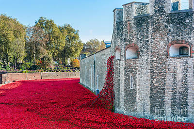 Tower Of London Digital Art - Cascading Poppies At Tower Of London by Graham Prentice
