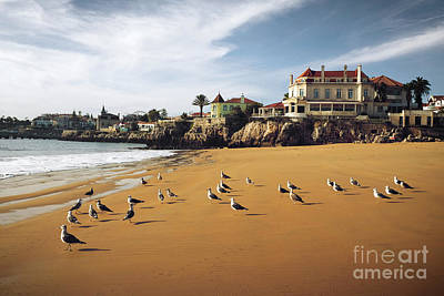 Touristic Photograph - Cascais Seagulls by Carlos Caetano