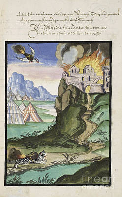 Cat And Bird Carrying Firebombs, 1607 Print by Folger Shakespeare Library